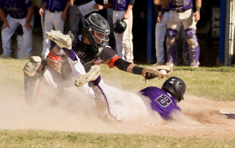 Webster Tigers fall in Division 4 Sectional Final