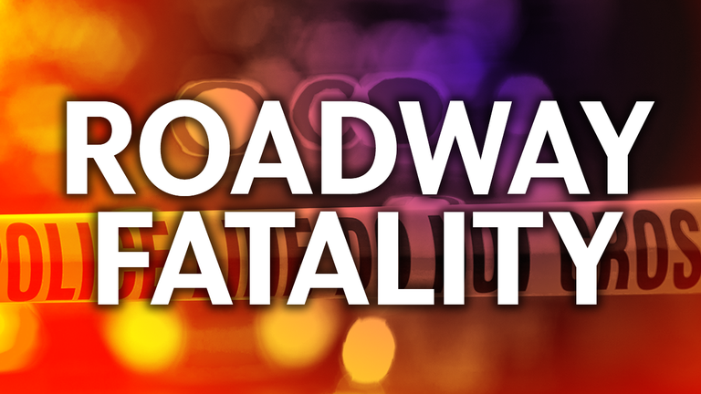 Single-vehicle accident is fatal