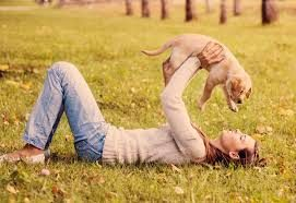 Socializing with Dogs, dogs teach humans, learning life skills from animals, artichoke, children and responisiblity, animals teach responisiblity, resilient with dogs