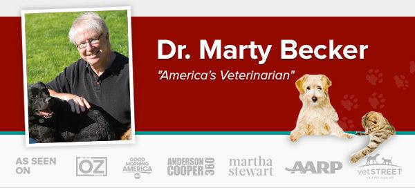 dr Marty Becker, America's veterinarian, pet loss, Twin Falls, Idaho, BlogPaws, WIPIN, Dog authority