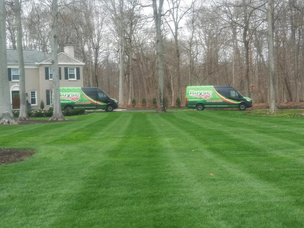 Royse Lawn Care Cincinnati residential and commerical lawn care 4
