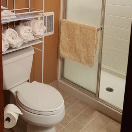 Bathroom Robin's Nest | 1922 Starkey House B&B Inn | Finger Lakes, New York