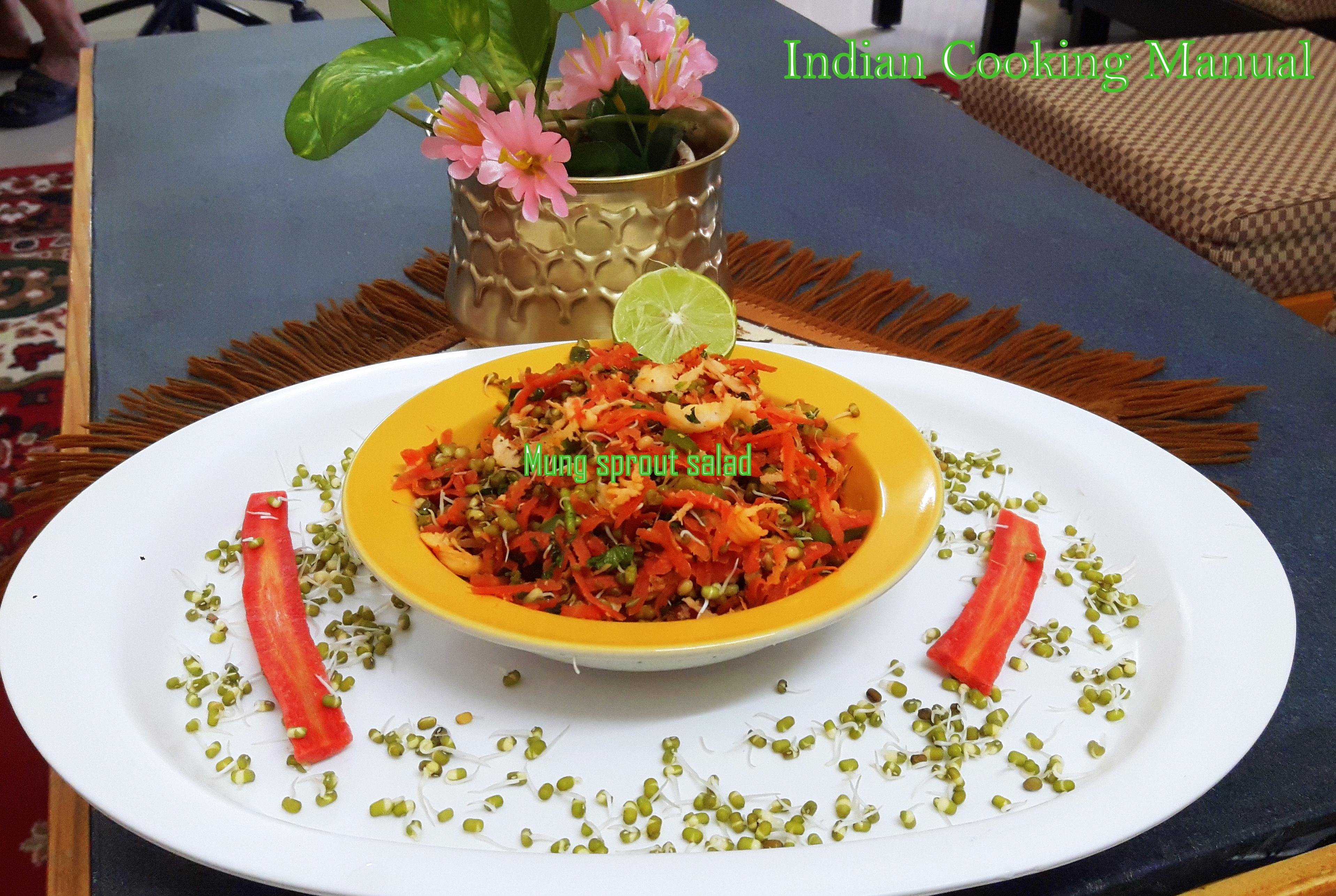 Moong/Mung (Green gram) sprouts salad