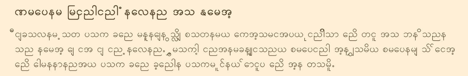 9-Burmese