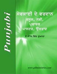 9-Cover Punjabi MiG