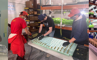 GREENS DO GOOD AWARDED GRANT FROM SOMEONE ELSE'S CHILD TO SUPPORT WORKFORCE DEVELOPMENT