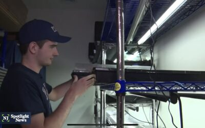 Hydroponic farm gives job opportunities to adults with autism, training to teens