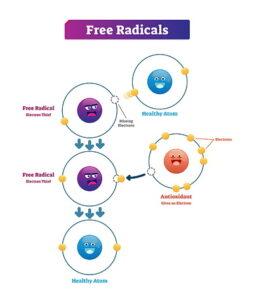 Illustration of the antioxidation process