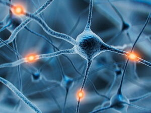 Illustration of neurons and their electrical impluses