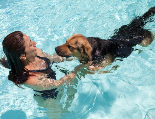 Lady teaching her dog to swim in a pool
