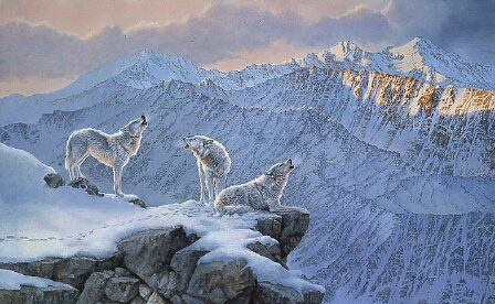 Pack of Wolves by Bonnie Marris