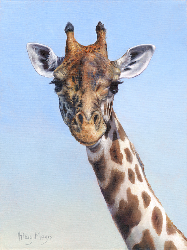 Wildlife – Giraffe by Hilary Mayes