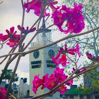 Original Farmers Market, West Hollywood