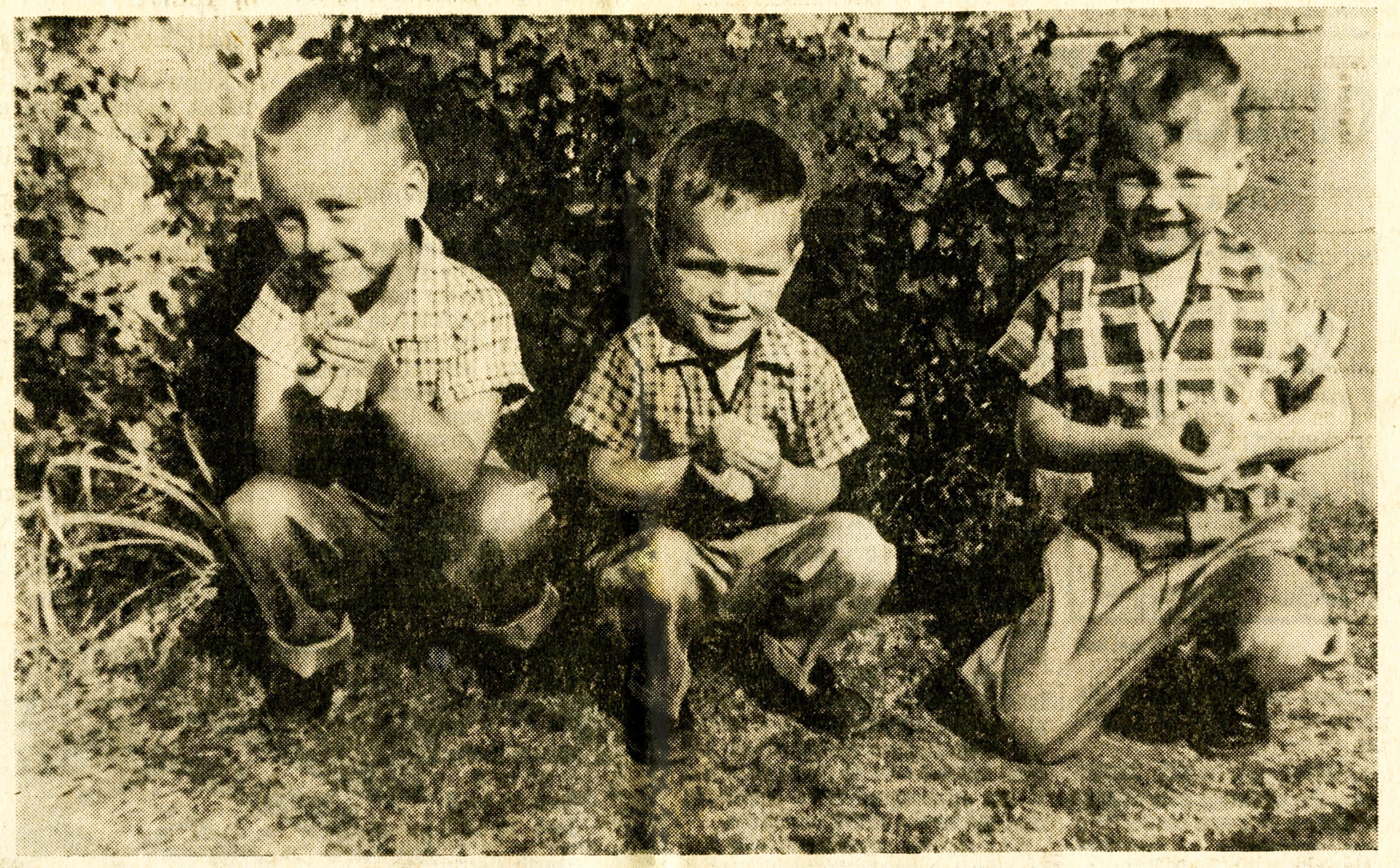 Tison brothers Donny (4), Raymond (2) and Ricky (3) holding Easter chicks
