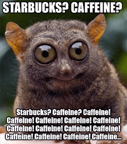 SBUX stimulated on caffeine reopening March 2021 meme
