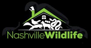 Wildlife Removal and Animal Damage Control of Nashville, Bellvue, Brentwood, La Vergne