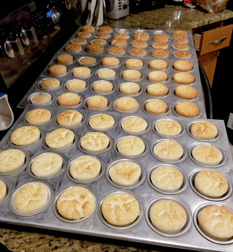 cupcakes in their pans; arranged back to front, light to dark in doneness of cooking