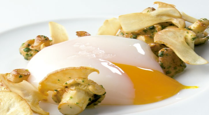 Mashed agricultural egg with sauteed spring mushrooms - Gastroactitud.  Passion for food