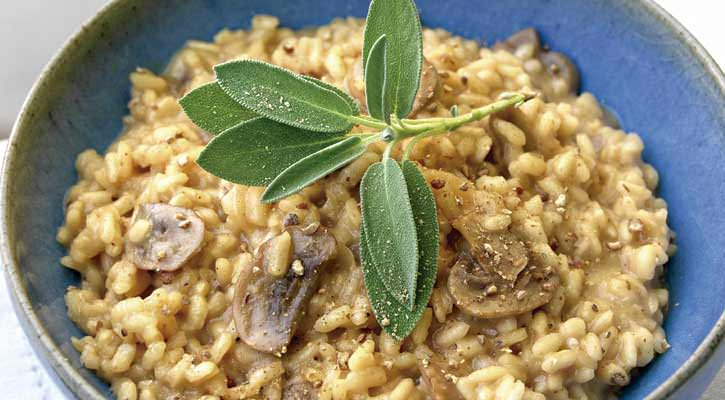 Stewed rice with mushrooms - Gastroactitud.  Passion for food