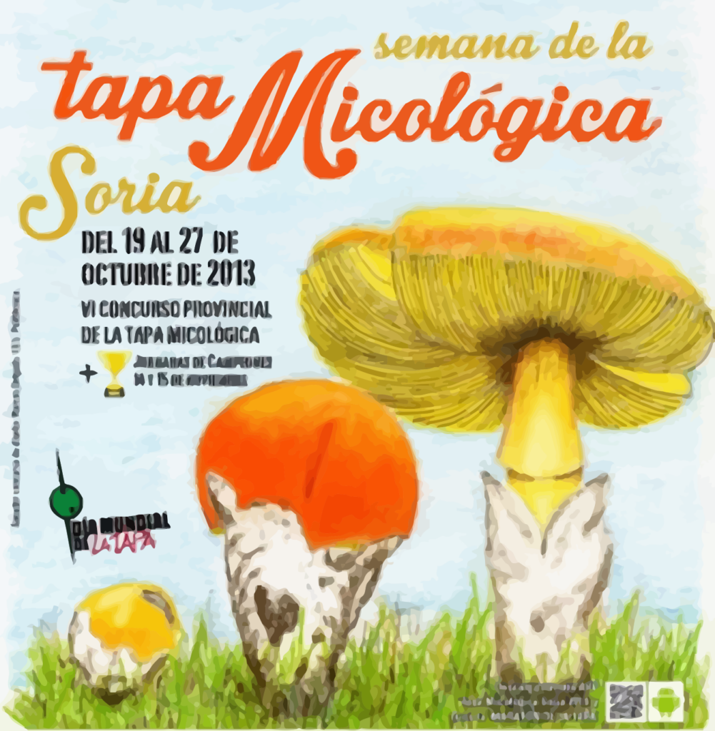 artel at the Mycological Stopper Week in Soria 2013
