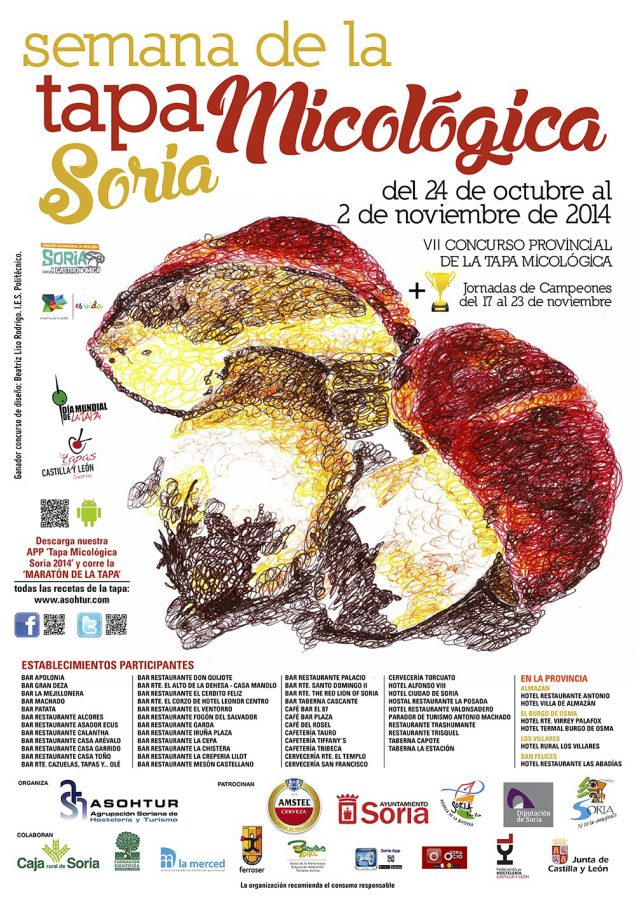 mycological cover poster 2014