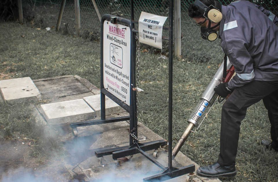 Mosquito control in your premise
