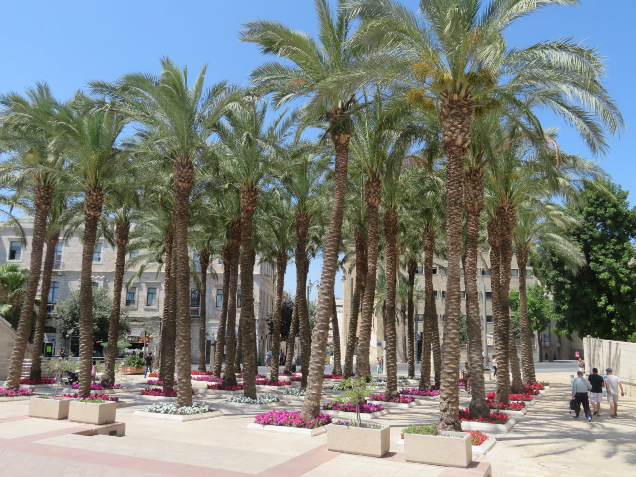 The joys of walking Jerusalem - Safra Square in the Russian Compound neighborhood
