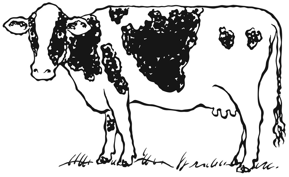 WI Milkhouse Cow