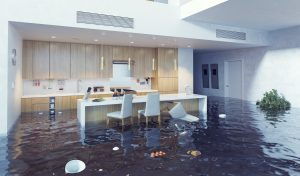 water damage cleanup cincinnati, water damage restoration cincinnati, water damage cincinnati