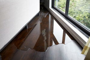 water damage cleanup cincinnati, water damage restoration cincinnati, water damage repair cincinnati
