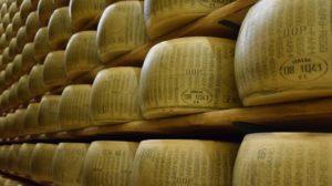 Cheese Supply