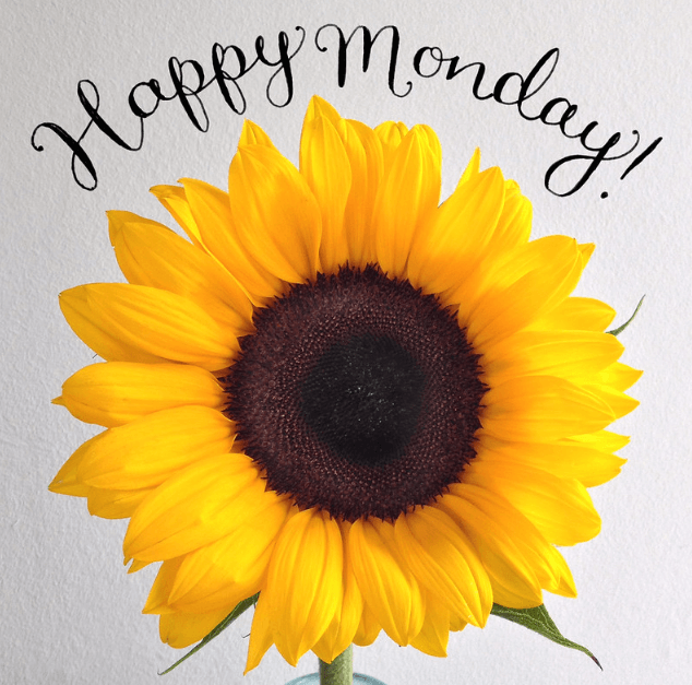 sunflower_Monday