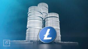 LTC Summit with David Schwartz of The Litecoin Foundation