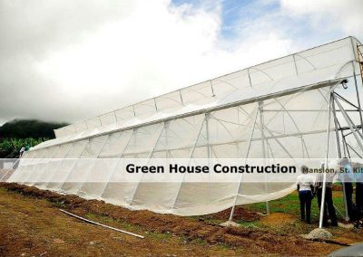 Green House Construction - Mansion