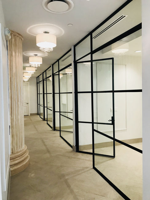 warehouse style metal and glass doors and transom and fixed panels
