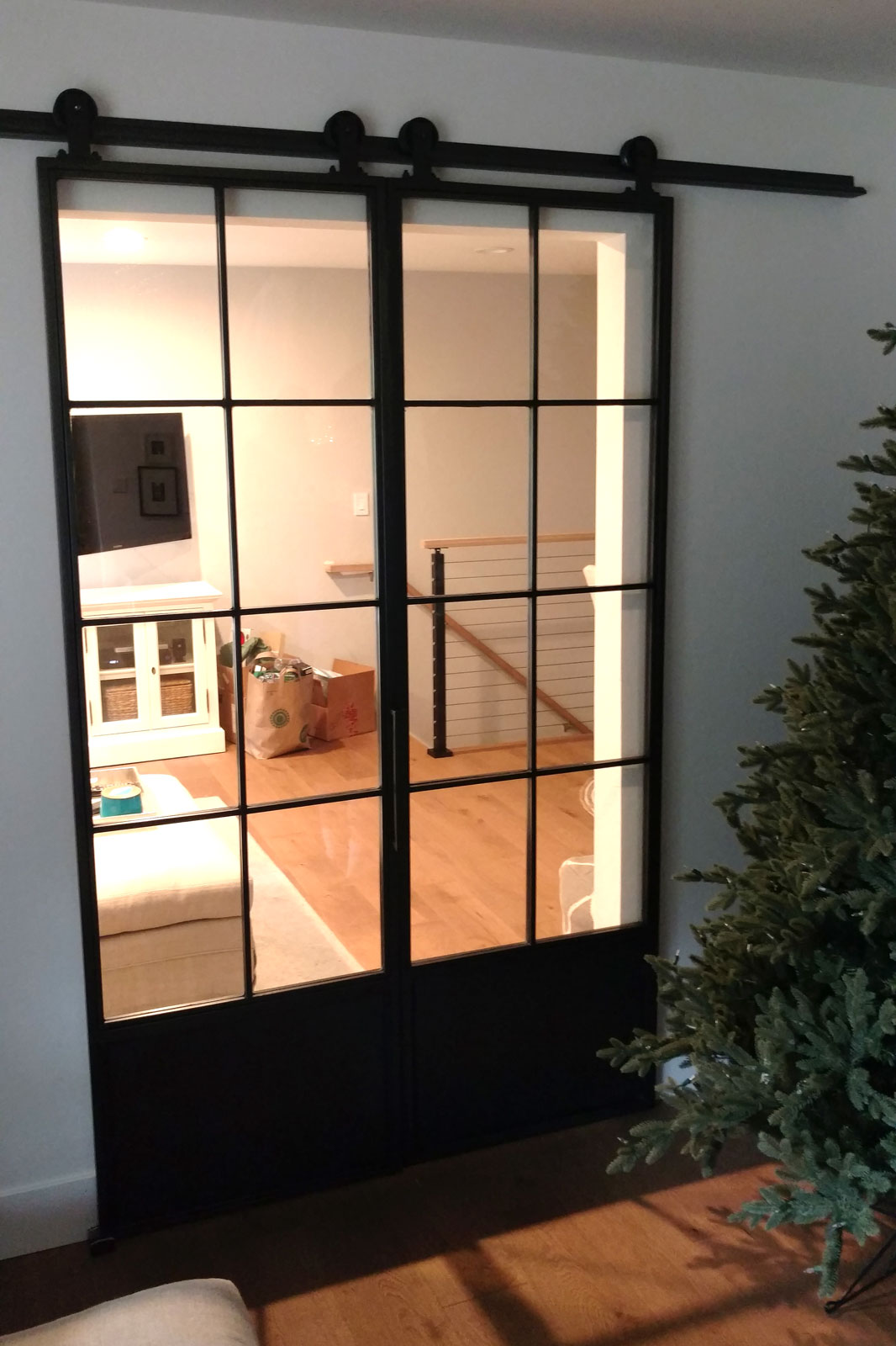 blacken steel and glass double barn doors