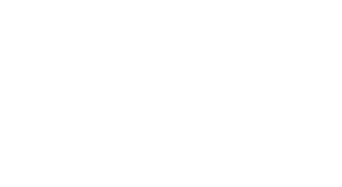 South American Airways - Alliance Member Logo
