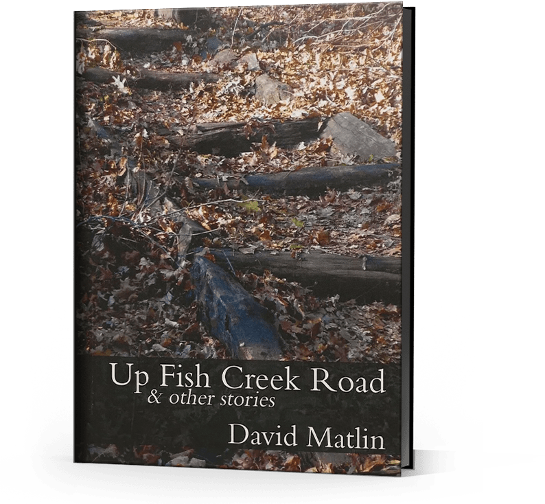 Up Fish Creek Road & Other Stories