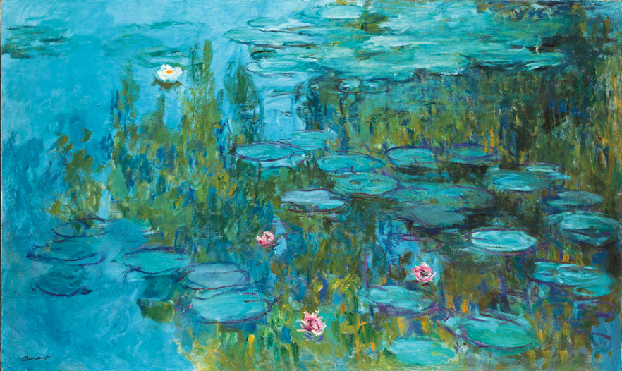 Nature Tutor Water Lilies