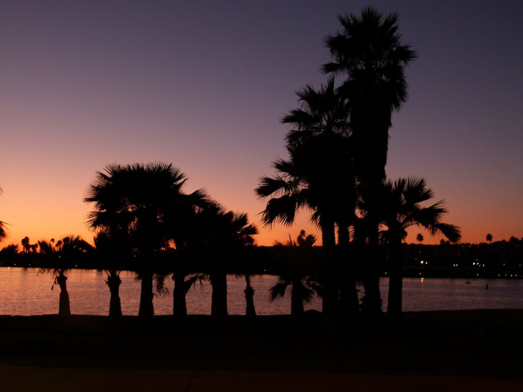san diego, sunset, palms