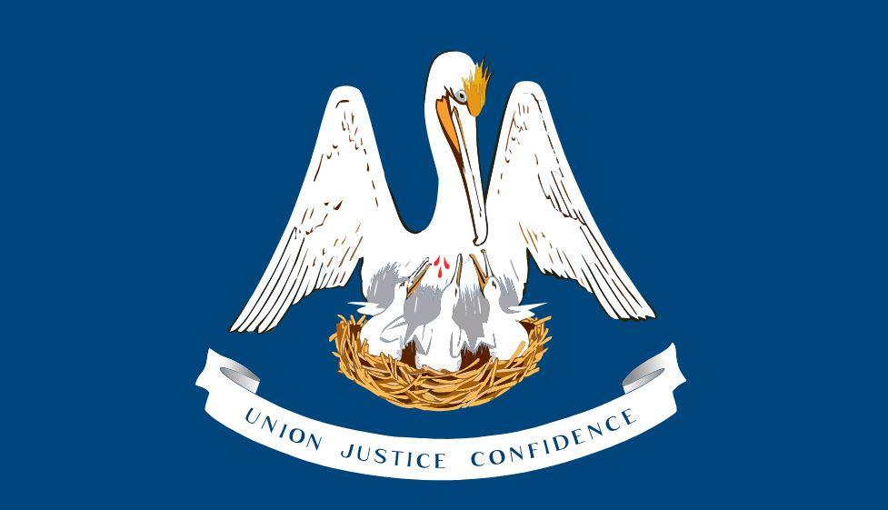 lawsuit funding-cash advance-Louisiana