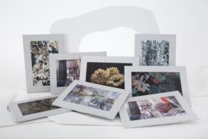 packaging Iskin Sisters - proyecto unidas por el arte