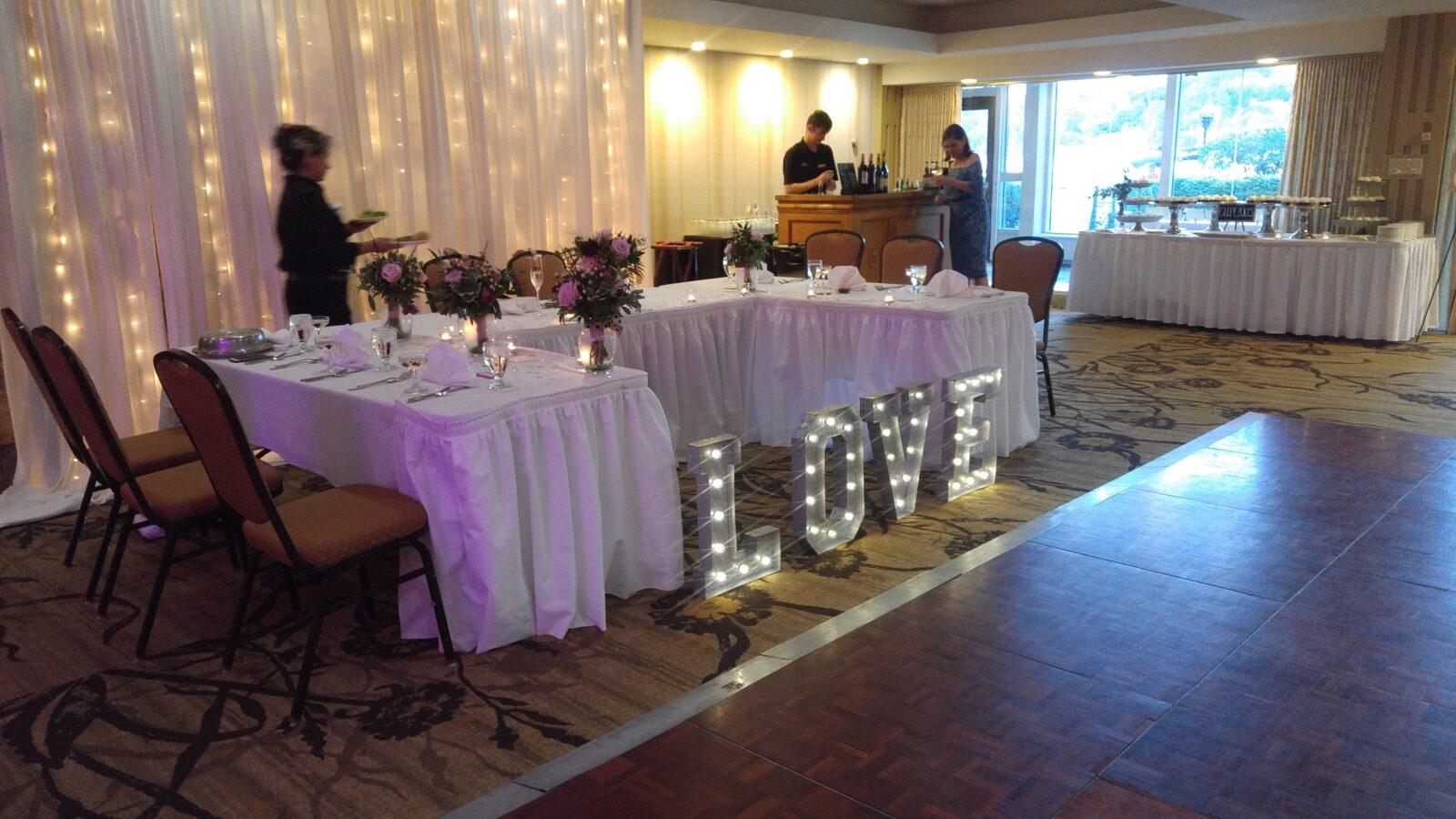 The Abbey Resort Wedding DJ service in Wisconsin