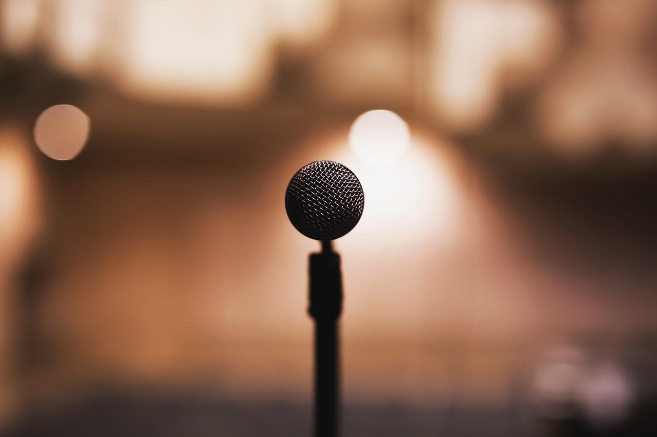 Wedding Speech microphone