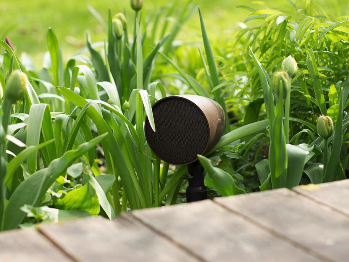 Outdoor Coastal speaker placed by walking in tall green grass
