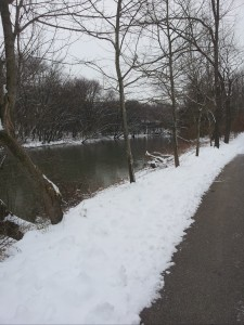Bike Path Winter