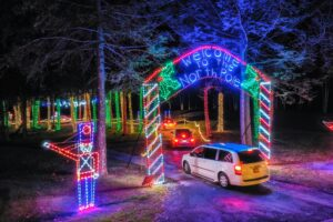 Tall Pines Forest of Lights
