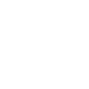 Town Brewing Co.