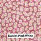 Daisies Pink White