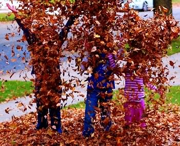 Free Leaf Pick-Up Day!